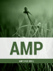 AMP Cover